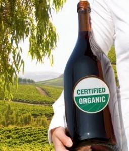 La magia del vino orgánico dans Vinos vino-biologico-255x300