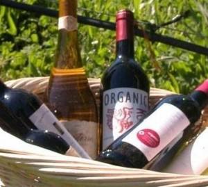 ¿Por qué pagar un poco más por el vino orgánico? dans Aperitivos vinos-organicos-300x269