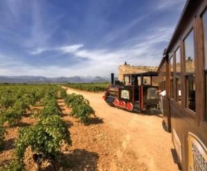 Mallorca es el lugar ideal para los amantes del vino dans Vinos mallorca-tour-wine-300x248